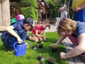 zahradnictví 1