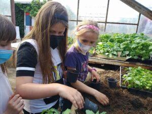 zahradnictví 2
